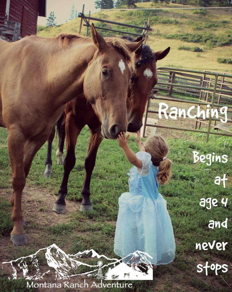 Ranching - Age 4